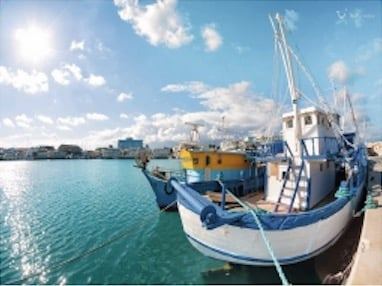 AIDA, Mein Schiff, MSC, Costa und Meer | Poster